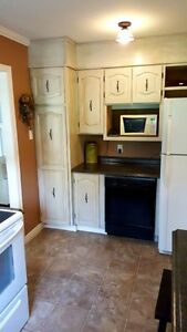 Lovly 3 Bedroom home on large lot in the heart of Clarenville St. John's Newfoundland image 3
