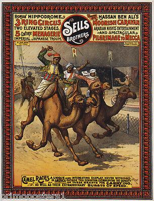 OW ARABIAN NIGHT'S ENTERTAINMENT VINTAGE POSTER REPRO (Race Night Dekorationen)