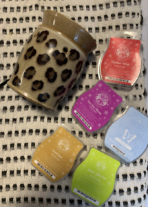 Scentsy Light & Scents