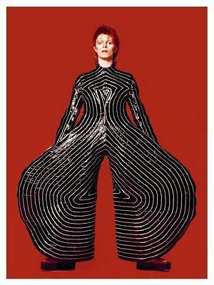 David Bowie LARGE POSTER Aladdin Sane TOUR  - AMAZING live costume image