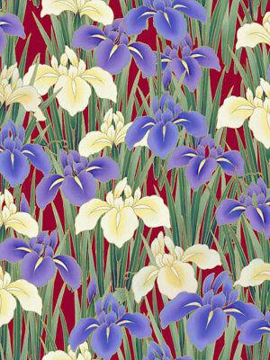 Kona Bay  Serenity  Iriss  Red