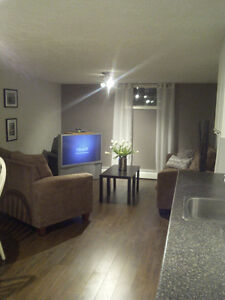 Beautiful Fully Furnished 1 bedroom Apt - All Inclusive