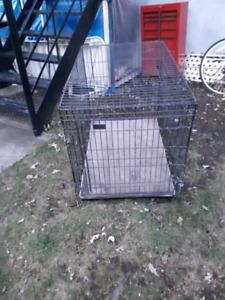 Cage à chien ou autre