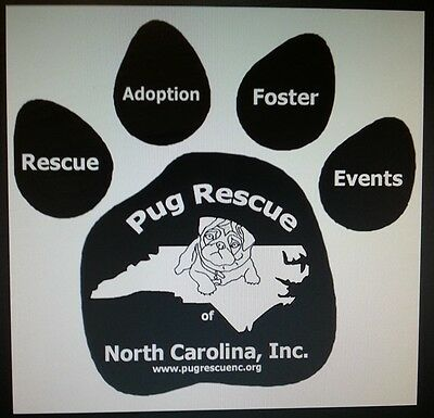 Pug Rescue of North Carolina