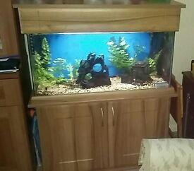 185ltrs Fish Tank