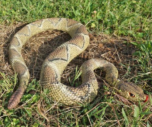 Rattlesnake Replica - Diamondback - Polyvinyl