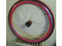 Pink fixie single speed wheelset