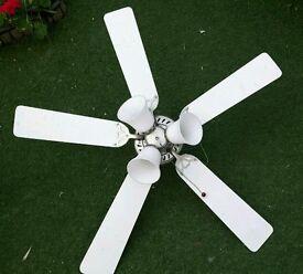 White ceiling fan!