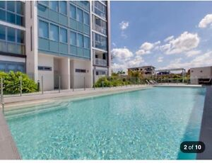 One bedroom apartment for rent in Bowen Hills nras available Bowen Hills Brisbane North East Preview