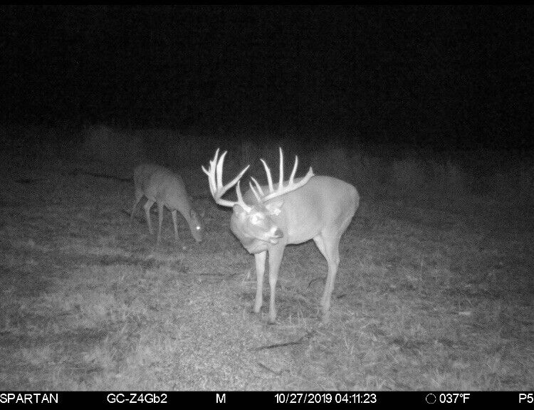 2S Whitetail Ranch 200-250 Inch Whitetail 3day Fully Guided Hunt