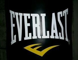 Everlast boxing punch bag