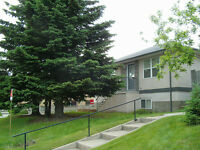 S.W. Bright Modern 2-Bdrm Upper Suite - Close To C-Train & Downt