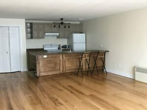 Room for rent in 4 bedroom apartment!