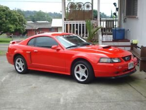 wanted to buy 1999-2004 mustang