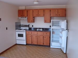 One Bedroom Apartment Available in Parkdale