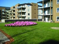 2 bedroom/ or 1+ Den Condo For Sale in Beautiful Aurora Estates