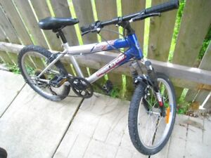 "Youth 20"" Bike, 5-speed, great working"