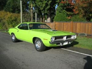 1970 Cuda 440  6 pak   1969 Shelby 500  & so much more June 25