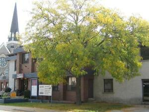 Affordable Private Office Space (furnished & unfurnished units) Cambridge Kitchener Area image 10