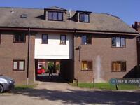 2 bedroom flat in Culver Lodge, St. Albans, AL1 (2 bed)