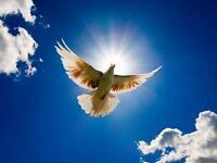 International clairvoyant Medium & Spiritual healer(speak English,Portuguese &french