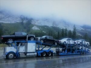 car shipping / auto transport