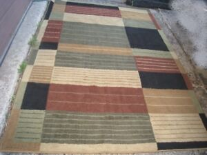 Used good clean Area Rug 5'X 7.5'