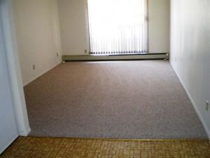 #208 - NEWER CARPETS IN UNIT WITH BALCONY VIEW!