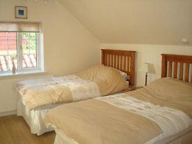 £80 pp WE SPEAK SPANISH/PORTUGUESE TWINROOM TURNPIKE LANE, MANOR HOUSE, ALL INCLUIDED.