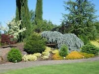 Professional quality landscape gardening service in Inverness/Highlands for all your gardening needs