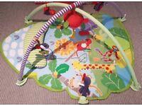 Mamas and Papas Playmat