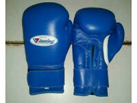 new customized blue wininng boxing gloves 16/oz