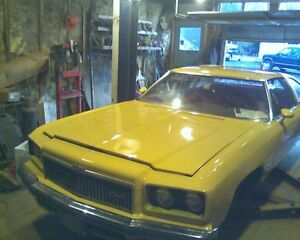 In search of 1975 caprice/impla parts