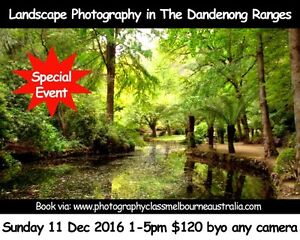 What's on in The Dandenong Ranges Sunday 11 Dec Photography Class Melbourne CBD Melbourne City Preview