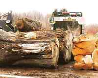 Portable sawmill service up to 5 ft wide stumps lumber beams