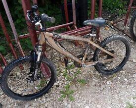 Anaconda silver fox childs mountain bike 6-8years