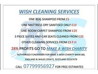 Wish cleaning services