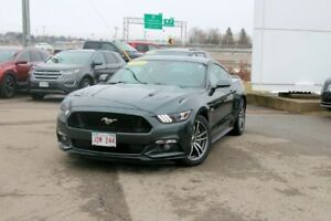 2015 Ford Mustang GTREAR CAMERA!! ONE OWNER!! FAST!!!!!!! L@@K!!