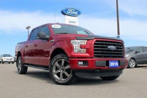 2016 Ford F-150 XLT 301A ECOBOOST 3.5L---TOW YOUR BRICK S*** HOU