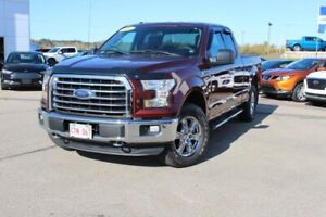 2016 Ford F-150 XLTNICE CLEAN TRUCK - REMOTE START - LOW MILEAGE