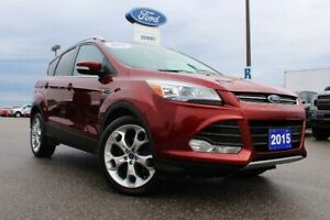 2015 Ford Escape Titanium NEW TIRES...IN YOUR DRIVEWAY FOR UNDER