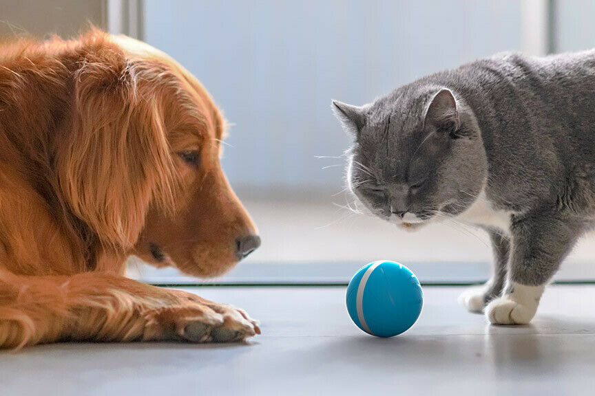Your Pets Joy When Home Alone Enjoyment Wicked Ball Pet Toy USB Electronic Wiggling Wobbling Crazy Ball Jumping Ball LED Rolling Flash Ball Fun Toy