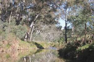 Peaceful rural land hideaway in NSW gold fields Windeyer Mudgee Area Preview