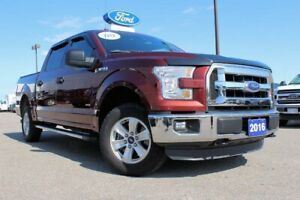 2016 Ford F-150 XLT4X4 SUPERCREW WITH TRAILER TOW PKG