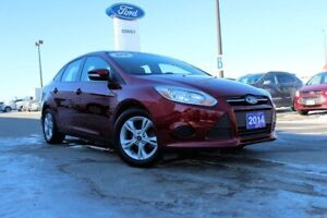 2014 Ford Focus SE GREAT CAR WITH LOW KM'S!!1 DRIVEN BY LITTLE O