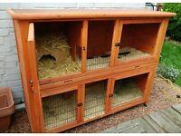 2 storey outdoor rabbit hutch