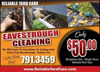 Eavestrough - Gutter Cleaning $50