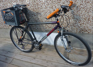 Raleigh Deore LX mtn + Apollo Prestige road - $550 gets BOTH
