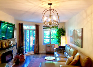 Beautiful riverfront condo for Sale in Overbrook