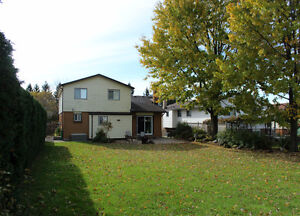 15 Harrow Court Totally Update and Renovated! 50x160 mature lot! London Ontario image 10